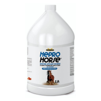 Global Equine - Hepro Horse x 38 Lt